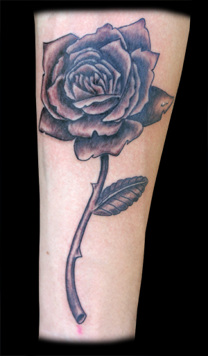 Black and Grey Rose 2011