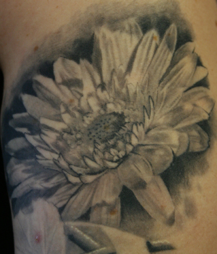 Comments: gerber daisy healed. Tattoos