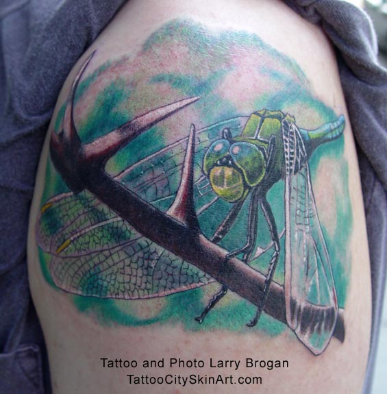 dragonflies tattoo. Brogan - Dragonfly Tattoo