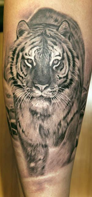 tattoo tiger. Tiger Tattoo