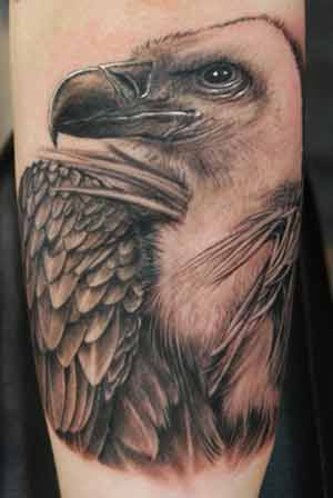 vulture tattoo