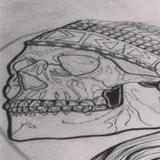 Chief Skull Original Artwork Thumbnail